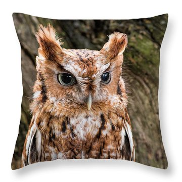 On Alert Throw Pillow