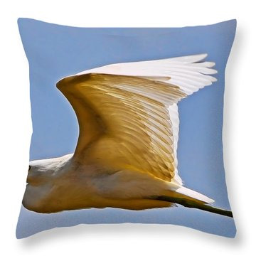 On Angel's Wings Throw Pillow by Gary Holmes