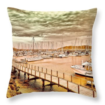 Throw Pillow featuring the photograph On Any Day by Wallaroo Images