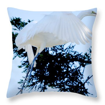 On Approach Landing Throw Pillow
