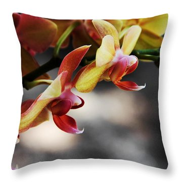 On Display Throw Pillow