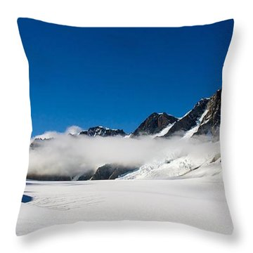 On Fox Glacier Throw Pillow