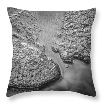 On Frozen Pond Collection 1 Throw Pillow
