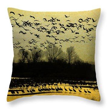 On Golden Pond Throw Pillow by Elizabeth Winter