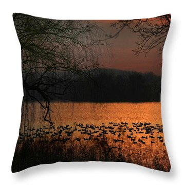 On Golden Pond Throw Pillow by Lori Deiter