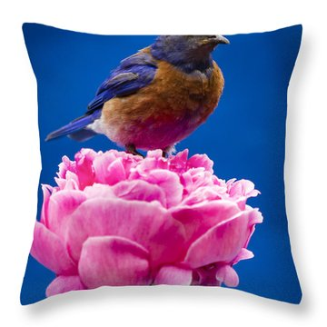 On Guard Throw Pillow by Jean Noren