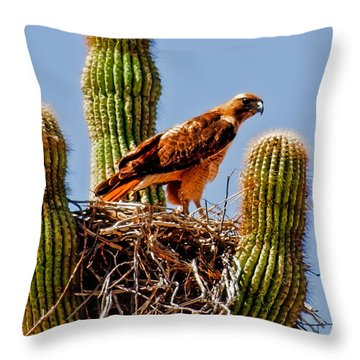 On Guard Throw Pillow by Robert Bales