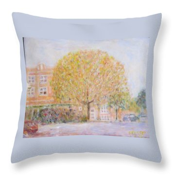 Leland Avenue In Chicago Throw Pillow