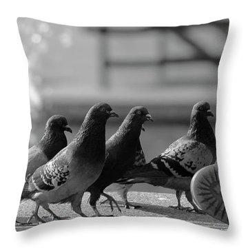 Pigeon Throw Pillows