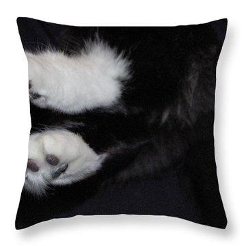 On Little Cat Feet Throw Pillow by Marilyn Wilson