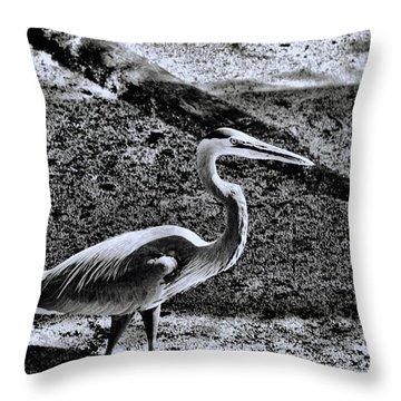Throw Pillow featuring the photograph On Patrol by Robert McCubbin