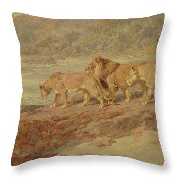 Briton Throw Pillows