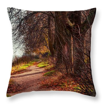 On The Bank Of River Volga Throw Pillow by Jenny Rainbow