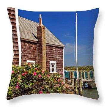 On The Cape Throw Pillow by Joann Vitali