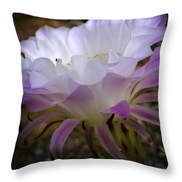 Throw Pillow featuring the photograph On The Edge by Lucinda Walter
