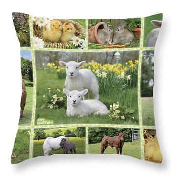 Cattle Dog Throw Pillows