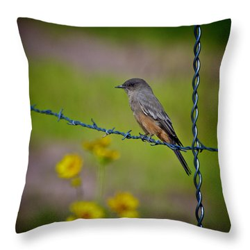 Throw Pillow featuring the photograph Say's Phoebe by Britt Runyon