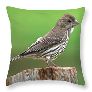 On The Fence Post Throw Pillow by Marion Johnson