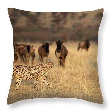 Kenya Throw Pillows