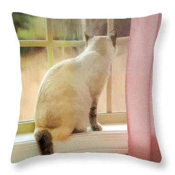 On The Inside Looking Out Throw Pillow by Kenny Francis