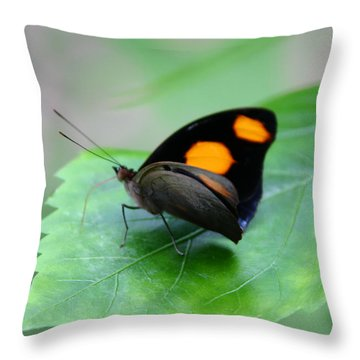 On The Leaf Throw Pillow