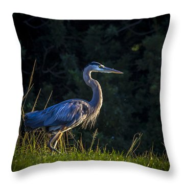 On The March Throw Pillow
