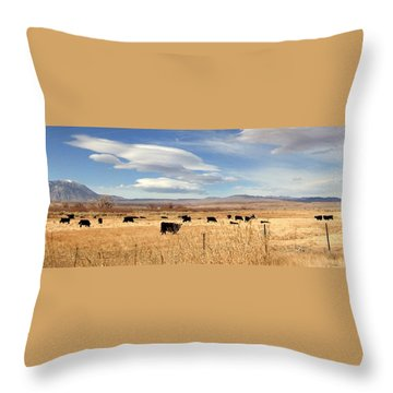 On The Open Lands Throw Pillow