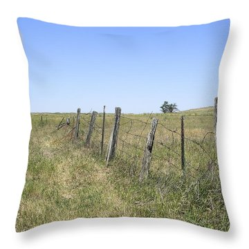 On The Range Throw Pillow by Daniel Hagerman