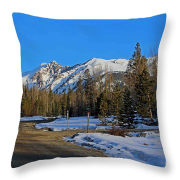On The Road Again Throw Pillow by Fiona Kennard