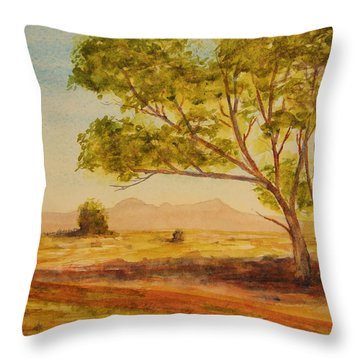 Throw Pillow featuring the painting On The Road To Broken Hill Nsw Australia by Tim Mullaney