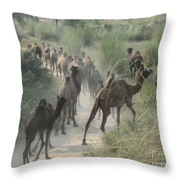 On The Road To Pushkar Throw Pillow