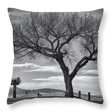 On The Road To Taos Throw Pillow