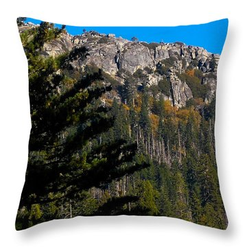 Throw Pillow featuring the photograph On The Rocks by Kristen R Kennedy