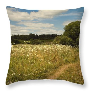 On The Summer Meadow II. Russia Throw Pillow by Jenny Rainbow