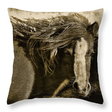 Winds Of Time Throw Pillow