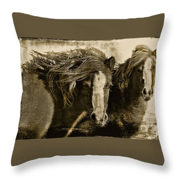 On The Winds Of Time Throw Pillow