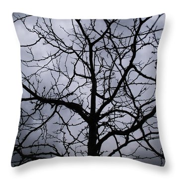Throw Pillow featuring the photograph On Their Shoulders Held The Sky by Linda Shafer