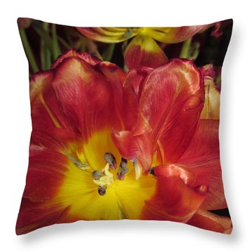 On Their Way Out Throw Pillow