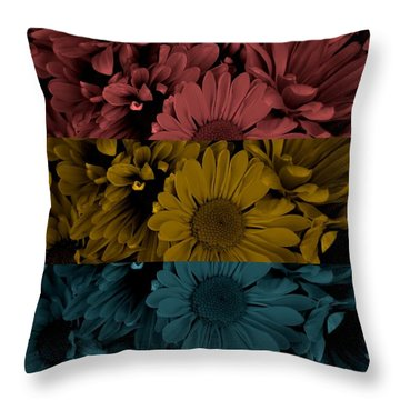 Once In A Lifetime Throw Pillow by Holley Jacobs