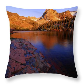 Once Upon A Rock Throw Pillow