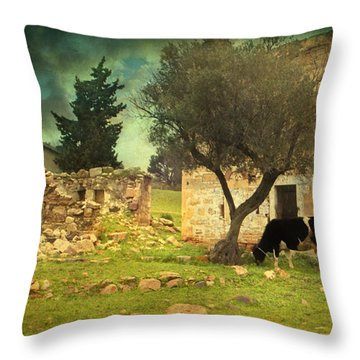 Once Upon A Time In Phokaia  Throw Pillow by Taylan Apukovska
