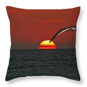 One Black Skimmers At Sunset Throw Pillow by Tom Janca
