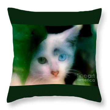 One Blue One Green Cat In New Olreans Throw Pillow by Michael Hoard