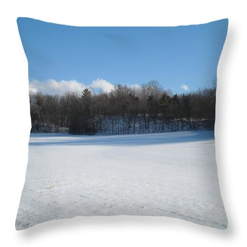 One Clump Of Grass In Snow Throw Pillow