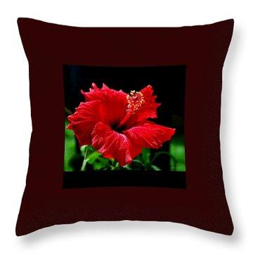 One Day Flower Throw Pillow by Marija Djedovic