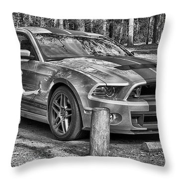One Day Throw Pillow by Howard Salmon