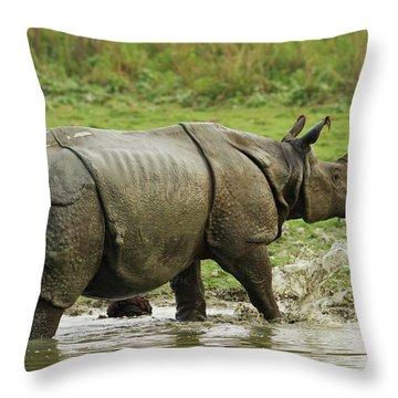 One Horned Rhino Throw Pillows