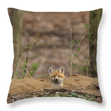 One Last Look Throw Pillow by Everet Regal