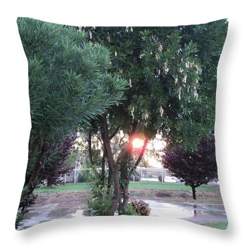 One Last Moment Throw Pillow by Carla Carson