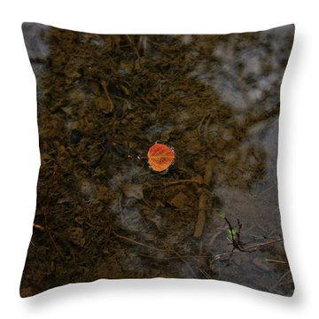 Throw Pillow featuring the photograph One Leaf by Jeremy Rhoades